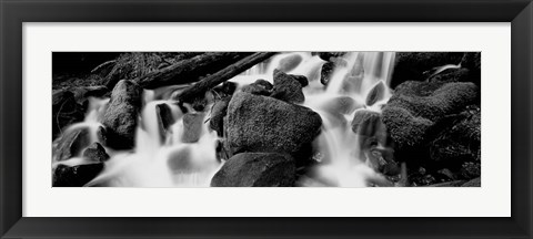 Framed Cascading waterfall in a rainforest, Olympic National Park, Washington State Print