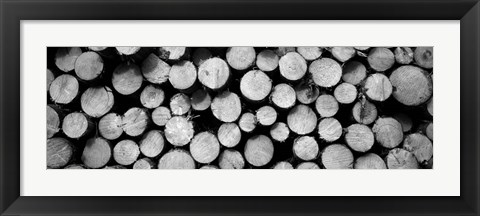 Framed Marked Wood In A Timber Industry, Black Forest, Germany Print