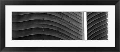 Framed Water drops on a palm leaf, Hawaii Print