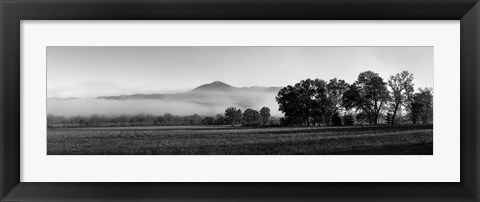 Framed Fog over mountain, Cades Cove, Great Smoky Mountains National Park, Tennessee Print