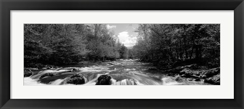 Framed Little Pigeon River, Great Smoky Mountains National Park, Tennessee Print