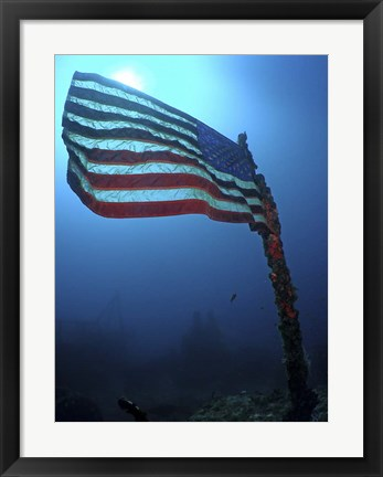 Framed American Flag on a Sunken Ship in Key Largo, Florida Print