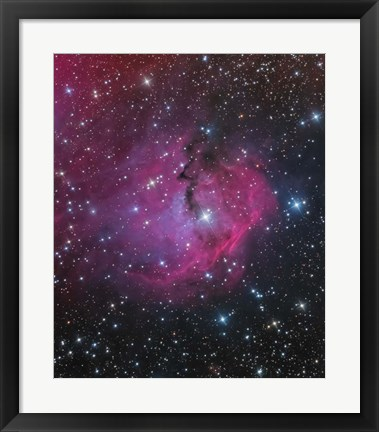 Framed VDB 93 is an emission and reflection Nebula in Canis Major Print