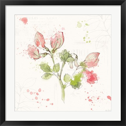 Framed Floral Splash II Print