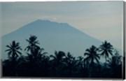 Bali, Volcano Gunung Agung, palm trees