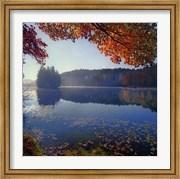 Bass Lake in Autumn I