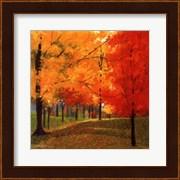 Bright Autumn Day II