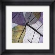 Purple and Grey Leaves II
