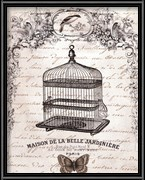 French Birdcage II - mini