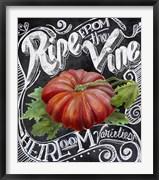 Chalkboard Tomato