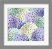 Hortensia Groundless Cool Tones