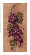 Vintage Grapevine l