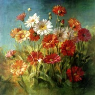 Painted Daises