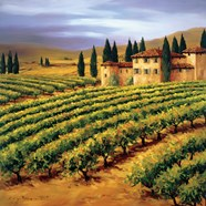 Villa in the Vinyards of Tuscany