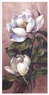 Magnolia Accents l  Fine-Art Print