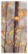 Golden Branches II  Fine-Art Print