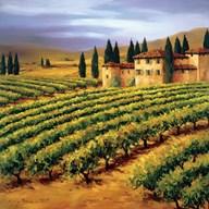 Villa in the Vinyards of Tuscany  Fine-Art Print