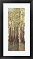 Forest Whisper II  Frame