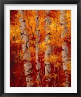 The Magnificent Season of Autumn B  Frame