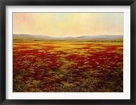 Poppies Forever  Frame