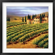 Villa in the Vinyards of Tuscany  Frame