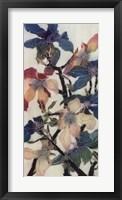 Magnolias XIII Framed Print