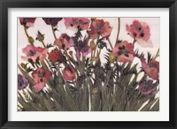 Framed Spring Poppies IV