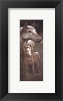 Meredith's Tammy Framed Print
