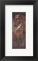 Ruane's Mariah Framed Print