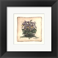 Framed Mixe Pansies