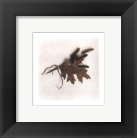 Framed Oak Leaf