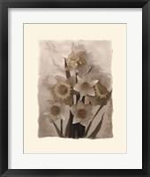 Framed Daffodils I