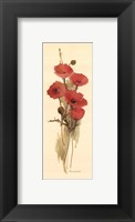 Framed Crimson Poppy