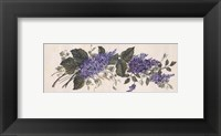 Purple Passion I Framed Print
