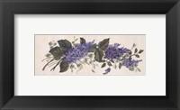 Purple Passion I Framed Print