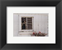 Framed Jonathan's Window