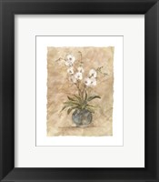 Framed White Orchids I