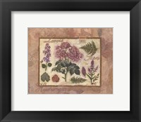 Framed French Hydrangea Collage