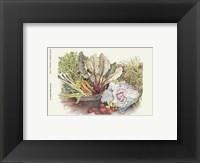 Framed Vegetable Display