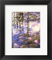 Framed Waterlilies