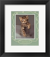 I Didn't Do It Framed Print