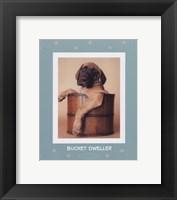 Framed Bucket Dweller
