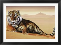 Framed Tiger In Sand