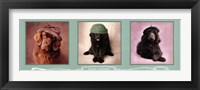 Smart Chapeau Framed Print