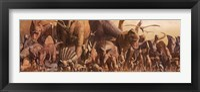 Framed Dinosaurs