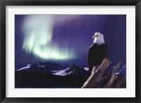 Framed Eagle, Aurora Borealis