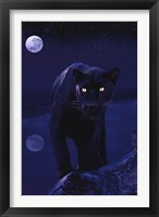 Framed Black Panther In Moonlight