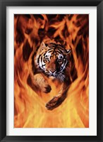 Framed Bengal Tiger Jumping Flames