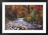 Framed Autumn Leaves