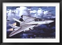 Framed Grumman F-14 Tomcat